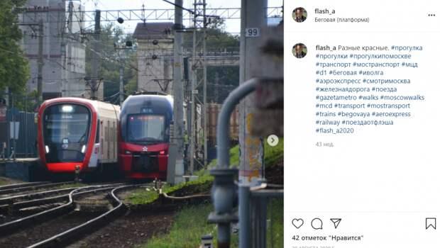 Фото дня: в ожидании поезда на Беговой