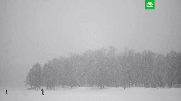 Синоптики рассказали о предстоящей зиме в России