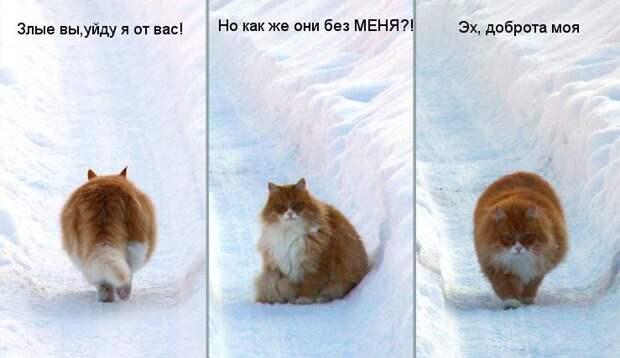 Мутко: Какая отставка! Я буду с российскими спортсменами до конца!
