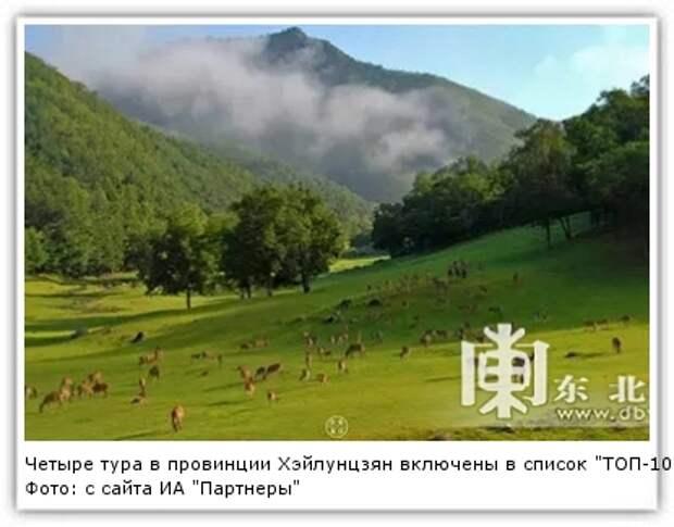 """Фото: с сайта ИА """"Партнеры"""""""
