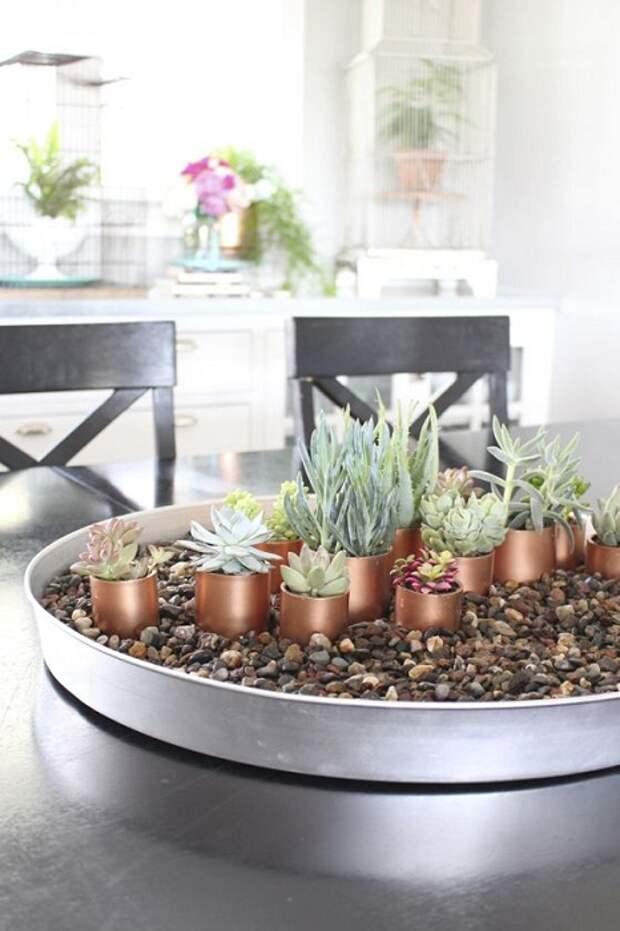 Пожалуй один из самых ярких примеров, того как можно создать очень красивый мини-сад в домашних условиях.