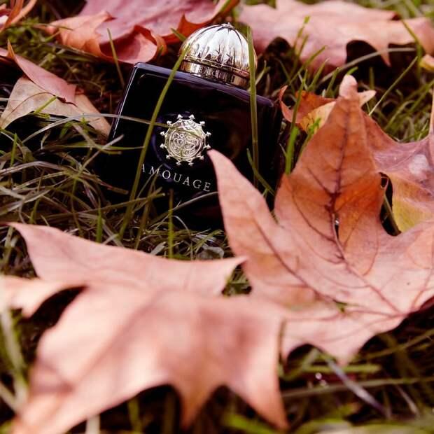 6 шаманских ароматов, которые вызывают ассоциации с предсказаниями, лесами и кострами
