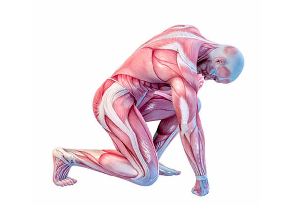 Сергей Бубновский: 5 секунд лечения холодом или пожизненная боль в суставах?