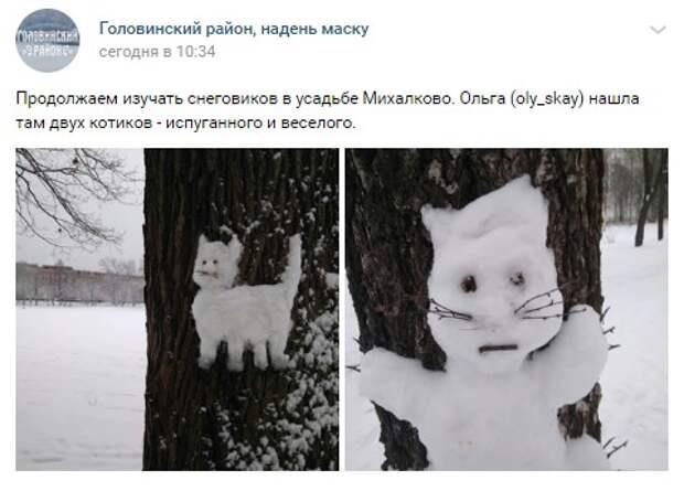 Фото дня: два состояния кота в усадьбе Михалково