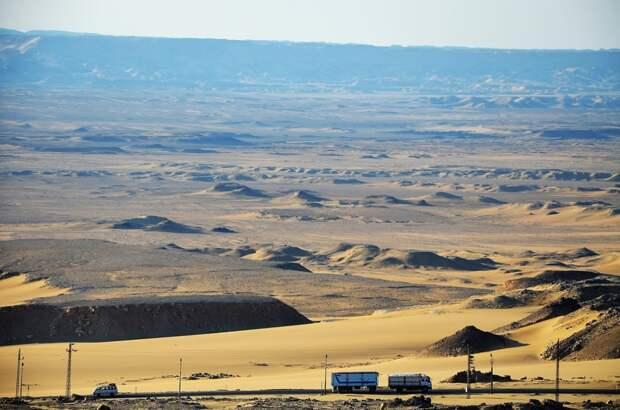 Недоподнятая целина: зачем Египту чудесный оазис посреди пустыни