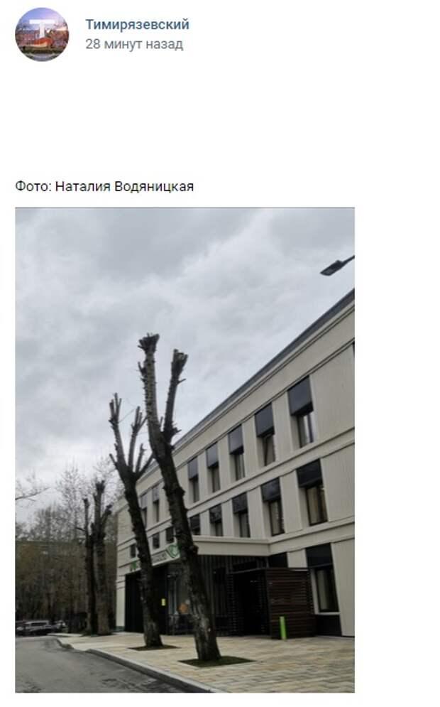 Фото дня: суровые стражи на Всеволода Вишневского