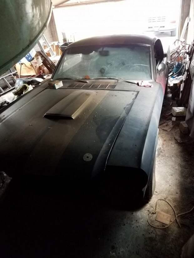 Из проката в забытье: уникальный Mustang нашли в сарае barn find, ford, ford mustang, mustang, авто, автомобили, находка, олдтаймер