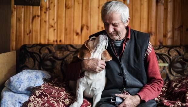 Соцработники обзвонили уже 500 тыс человек старше 60 лет в Подмосковье