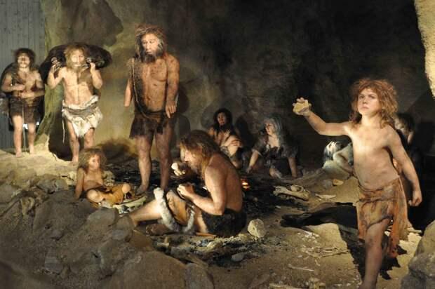 ДНК из испанских пещер помогли выявить несколько волн миграции неандертальцев 100 тысяч тел назад