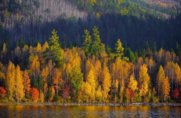 Золотая осень в фотографиях из разных уголков России