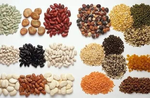 Лучшие источники белка для тех, кто не ест мяса