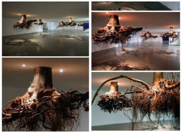 Из корней деревьев интересное, искусство, креатив, творчество
