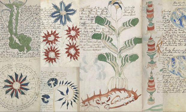 Разгадана самая таинственная в мире рукопись