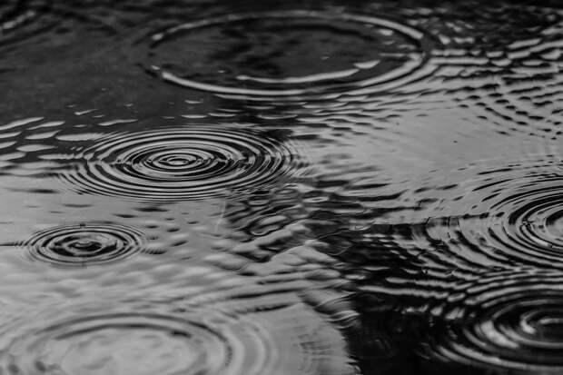 Справляются ли коммунальные службы в Некрасовке с подтоплениями – опрос