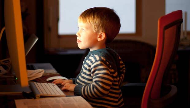 Детский омбудсмен Подмосковья предложила разработать онлайн‑программы для детей