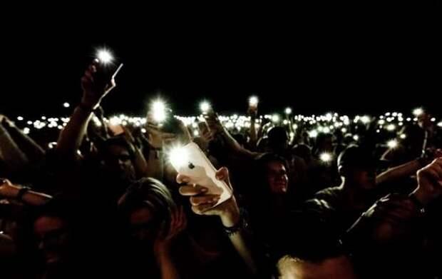 По тысяче за участие в акции с фонариками – хомяки платят себе подобным