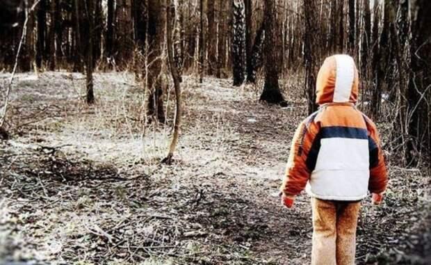 В лесу спасатели обнаружили потерявшегося мальчика, ребенок уверяет, что ему помог выжить медведь