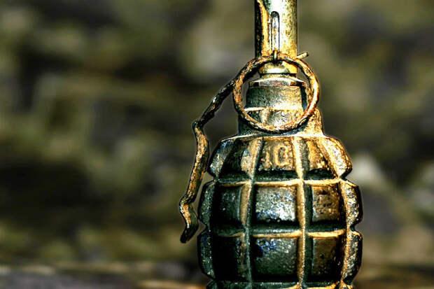 Как устроена военная граната-лимонка внутри