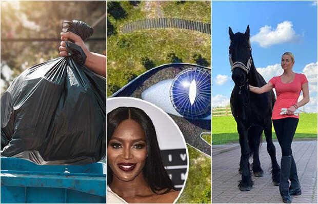 Сногосшибательные и нелепые подарки, которые получали звезды: Замок для Зеты-Джонс, лошади для Волоч