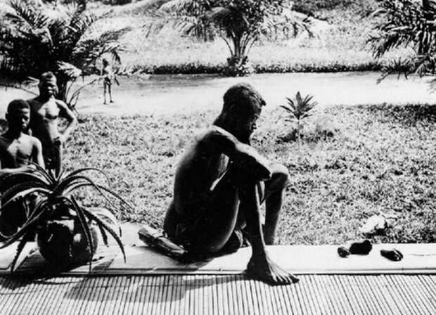 Свободное Конго: людоедские корни ЕС