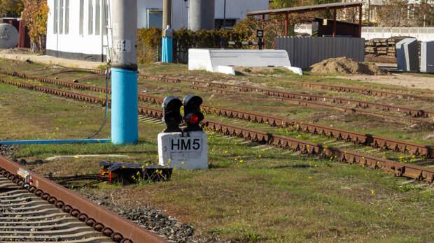 Под Севастополем грузовой поезд сбил 40-летнего мужчину
