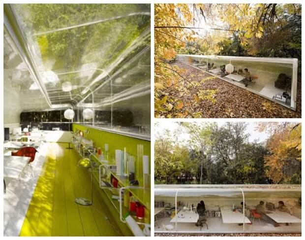 Офис архитектурного бюро Selgas Cano расположен посреди парковой зоны под кронами деревьев (Мадрид, Испания).