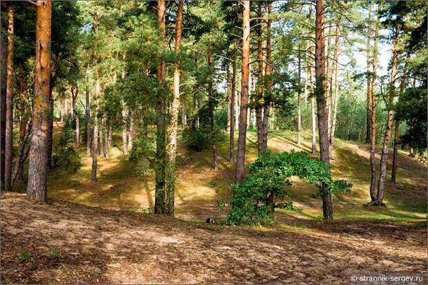 Сикстинская капелла в лесах Подмосковья