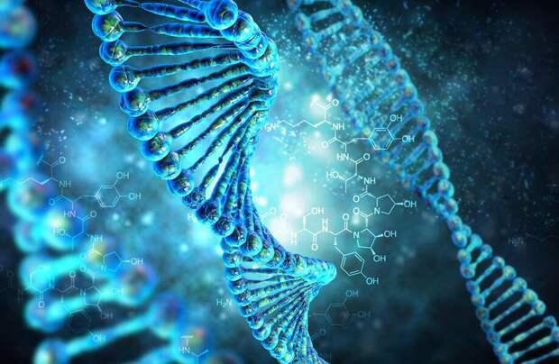 Видео: Какие гены человек потерял во время эволюции