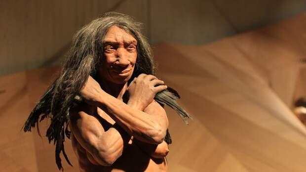 Антропологи нашли следы миграций неандертальцев по ДНК из испанской пещеры