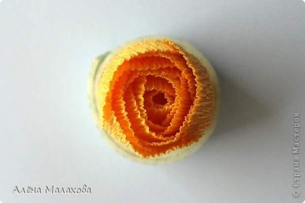Мастер-класс Роза из гофрированной бумаги Бумага гофрированная Клей фото 19