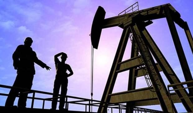 Ожидается рост запасов нефти вмире в2021 году