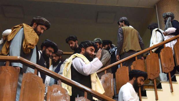 Посол России заявил о победе талибов над коррупцией
