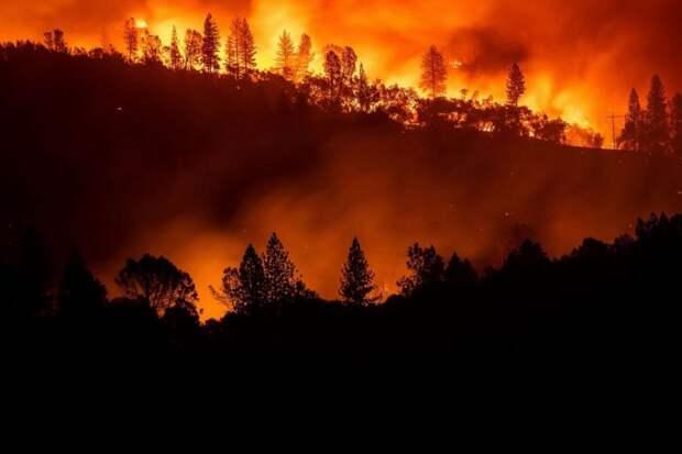 В США воздух стал худшим в мире из-за пожаров: в NASA показали снимки из космоса