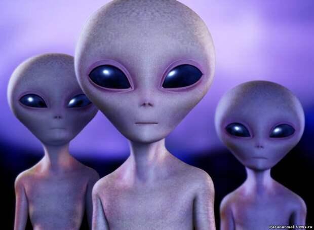 Руководители НАСА заявили, что в ближайшие 20 лет состоится контакт с инопланетянами