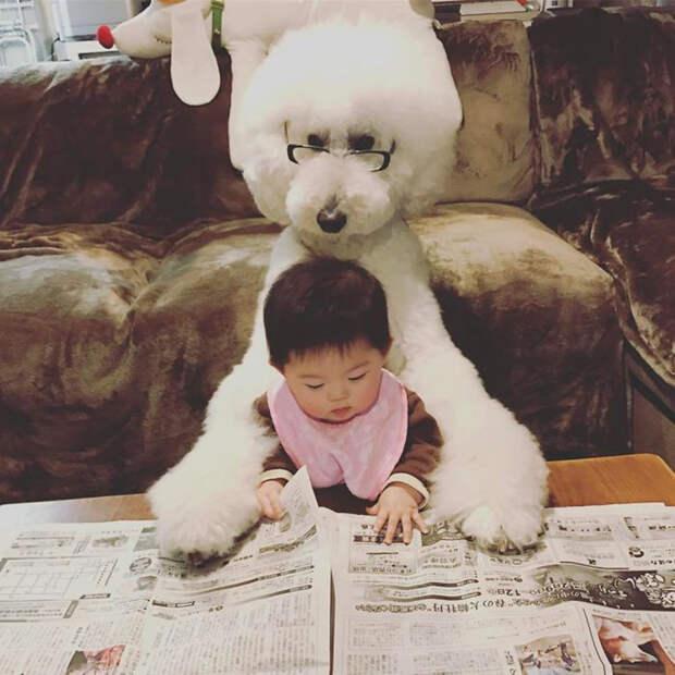 Годовалая японская девочка, огромный пудель инежная дружба