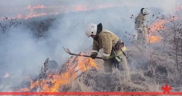 В Крыму с 1 апреля введут режим чрезвычайной пожарной опасности