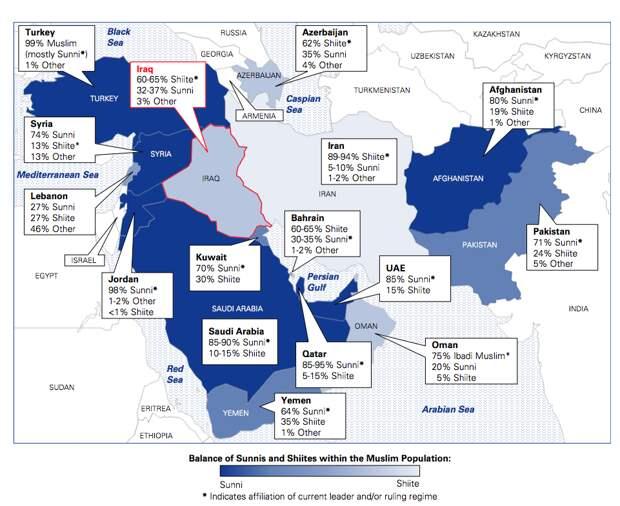 Почему произошло разделение на суннитов и шиитов ?