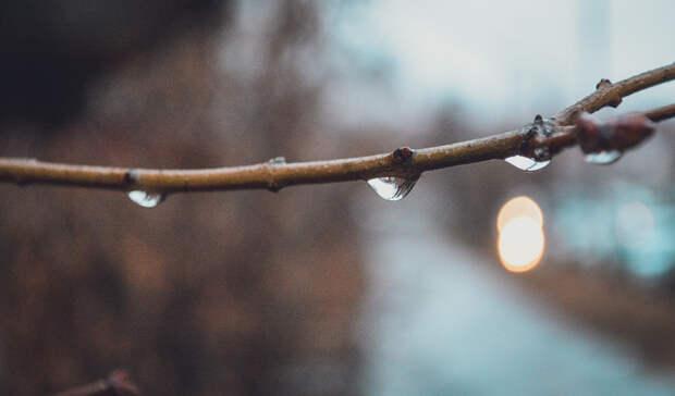 В Тюмени с 13 сентября будет холодно, но это последняя неделя без снега
