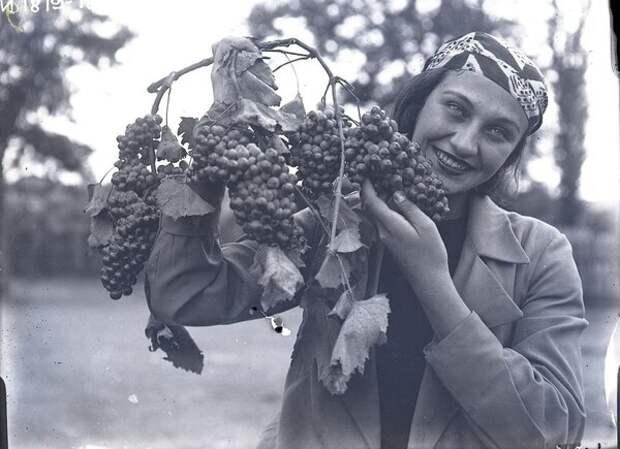 Женщина с гроздью винограда. Неизвестный автор, 1938 год, Грузинская ССР, Кунсткамера.