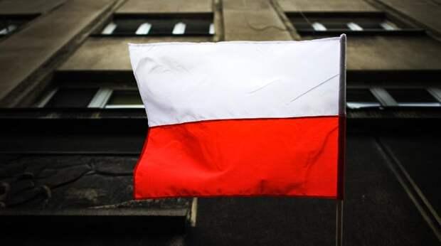 Пушков ответил на заявление «геополитического фантазера» из Польши