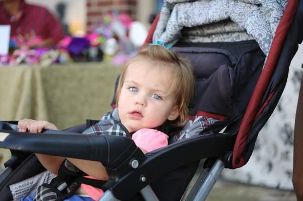 Ребенок, коляска/Фото: pixabay.com