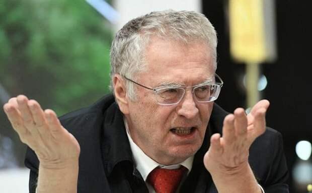 Жириновский: США нужно разделить на две части – для чернокожих и белых