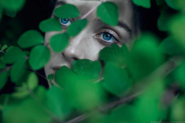 fotografii s zelenym tsvetom 5
