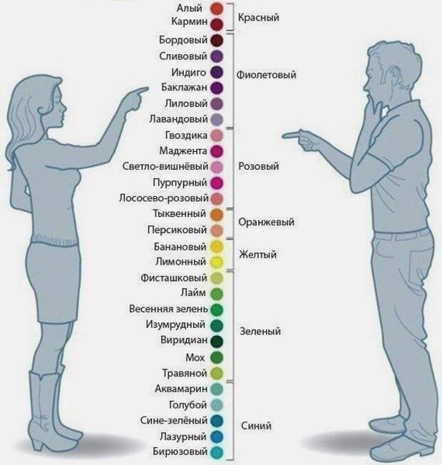 Различие цветов