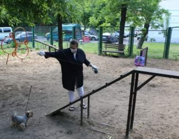 Лесенку отремонтировали/Ярослав Чингаев, «Юго-Восточный курьер»
