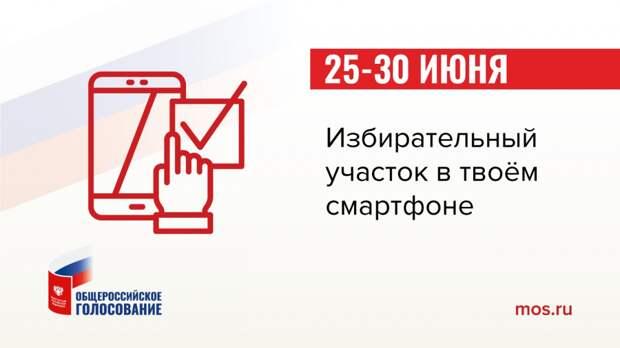 ВЦИОМ: более половины россиян готовы голосовать дистанционно