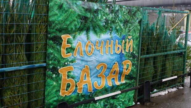 Елочные базары откроются в Подольске в пятницу