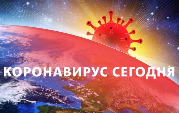 Коронавирус в России: статистика на 23 февраля