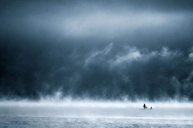 Туманная жизнь на озере