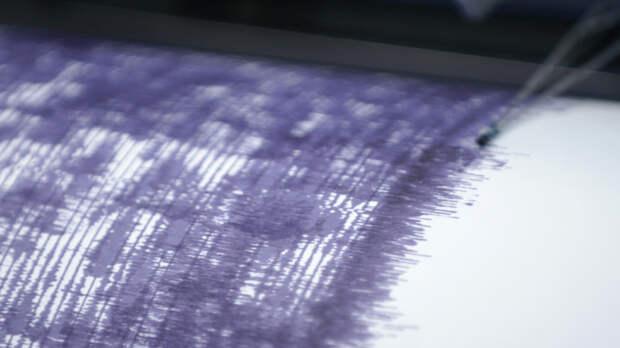 Четыре землетрясения магнитудой до 4,2 зафиксированы у берегов Камчатки